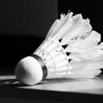 BadmintonFoto