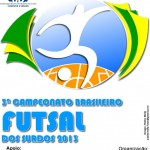 BrasileiroFutebolCBDS2013