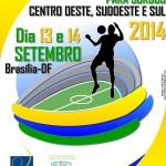 CampBrasileiroFutebolCampo2014