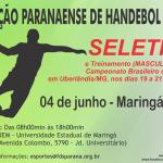 Seleção PR seletivahandebol2015PR